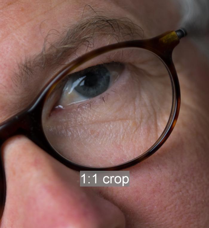 1:1 crop (before B&W conversion)