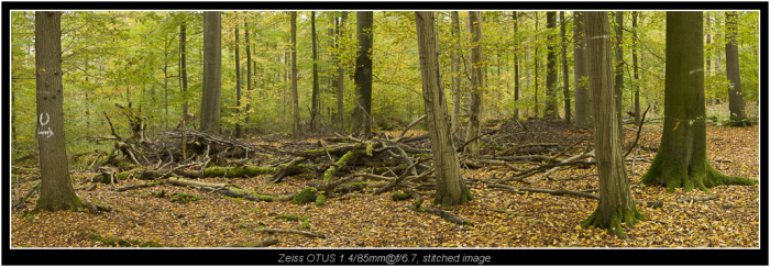 stitch of 10 images, two rows, f/6.7 30.000 pixel wide!  this only makes sense, when you want the option for huge prints :-)