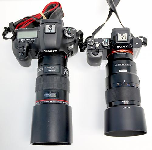 Canon_vs_Sony90mm_macro