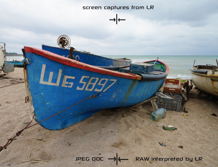 LR RAW vs JPEG Sony A7RII