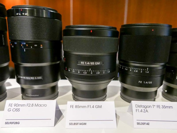 sony_fe_85mm_f1_4_gm_preview_09