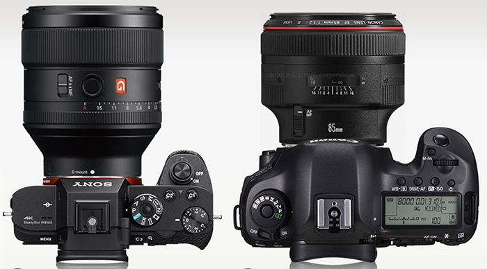 Canon 85mm F 1 2 Versus The Sony 85mm F 1 4 Gm By Gary