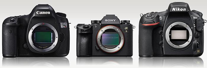 Perbandingan A9 dengan Full Frame lainnya, Image Credit : Camerasize