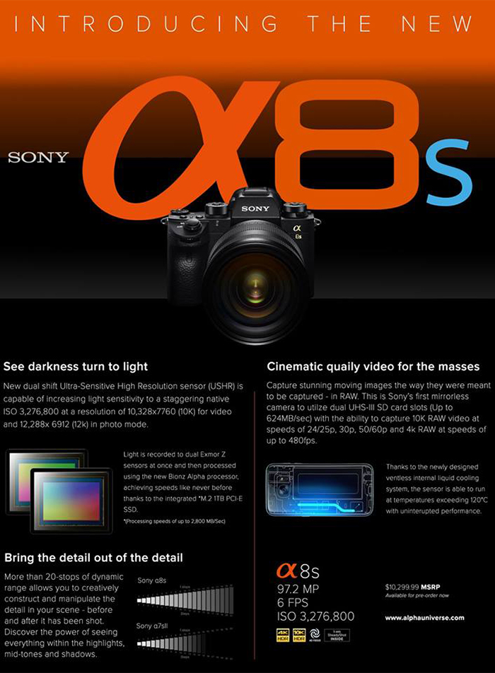 sony dynamic capabilities Start studying 3830 ch 4 learn and was able to gain market leadership over sony and microsoft based on the importance of dynamic capabilities to a.