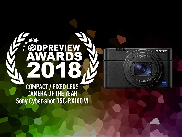 Sony A7III is the camera of the year according to Dpreview