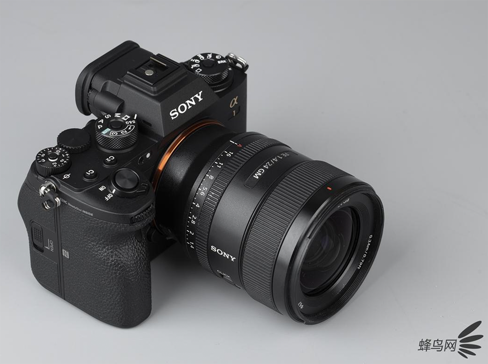 Nice Sony A1 pics by Fengniao